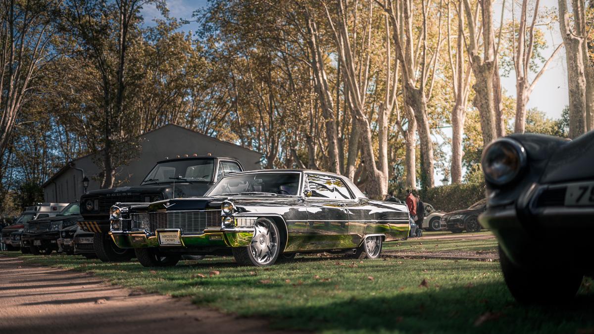 2019_11_03 Domaine De La Baratonne Cadillac